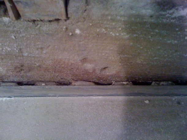 Probably need a flooring expert to answer this one...-photo.jpg
