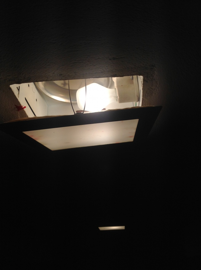 Basement lighting help!-photo.jpg