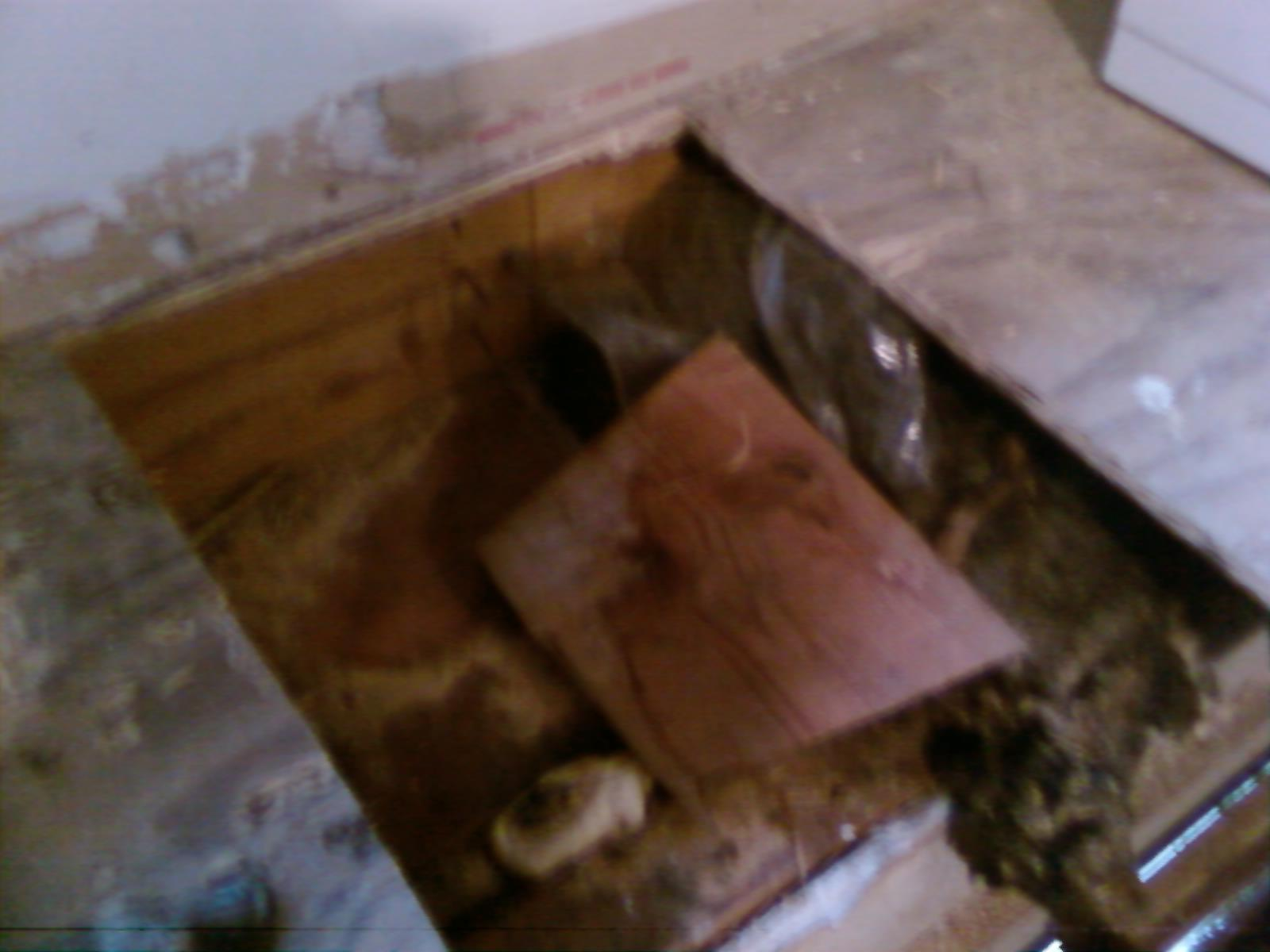 Sister or Replace Floor Joists-photo0172.jpg