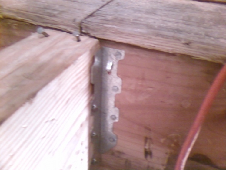 Sister or Replace Floor Joists-photo0196.jpg