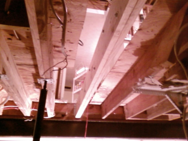 Sister or Replace Floor Joists-photo0199.jpg