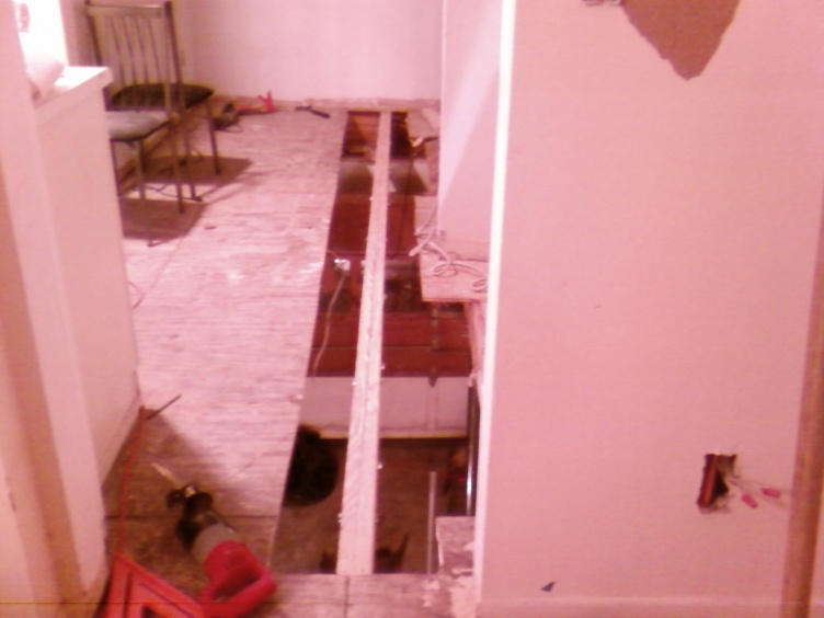 Sister or Replace Floor Joists-photo0200.jpg