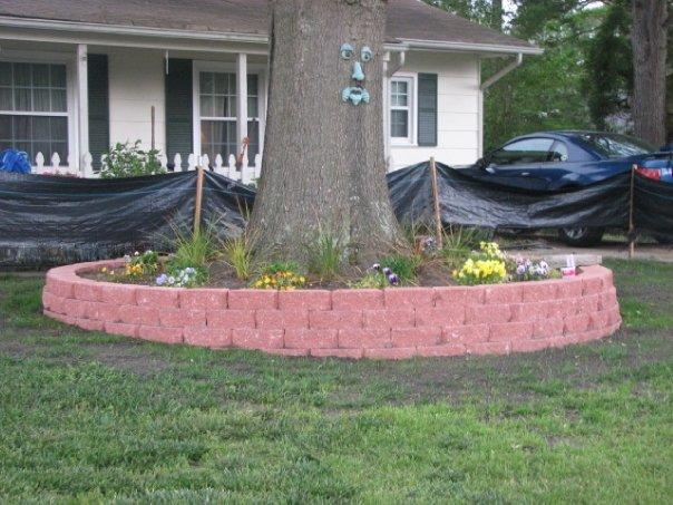 Low retaining wall around a tree-photo1.jpg