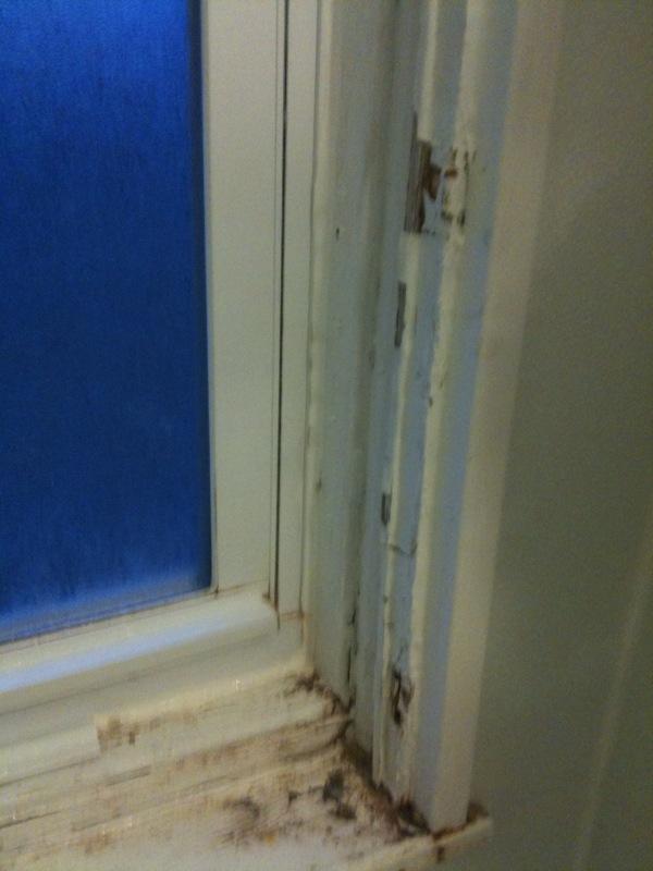 Painting bathroom window in shower-photo1.jpg