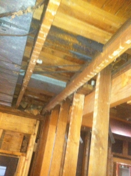 Sister Joists Without Leveling Floor-photo1.jpg