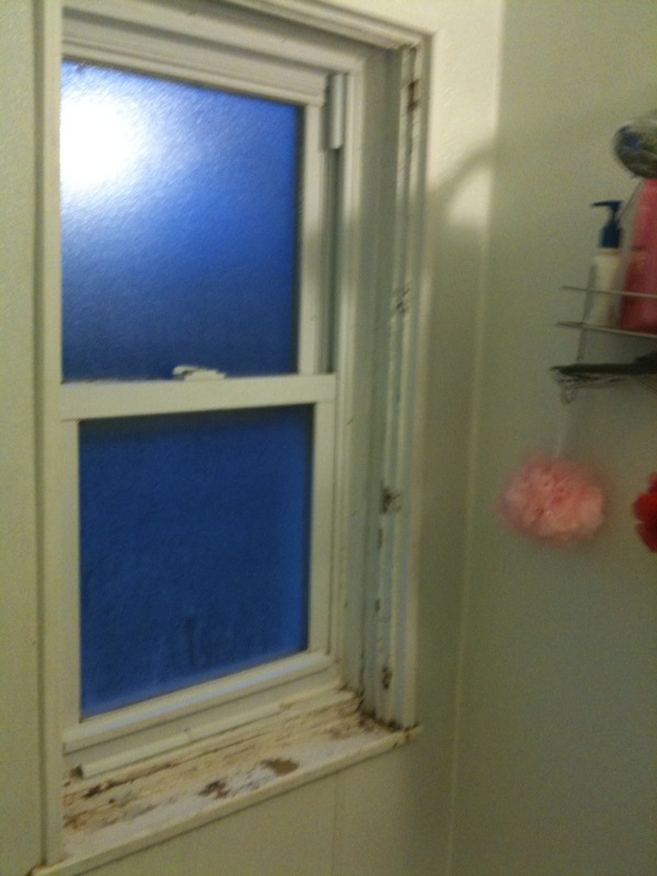Painting Bathroom Window In Shower Painting DIY Chatroom Home - Bathroom windows in shower