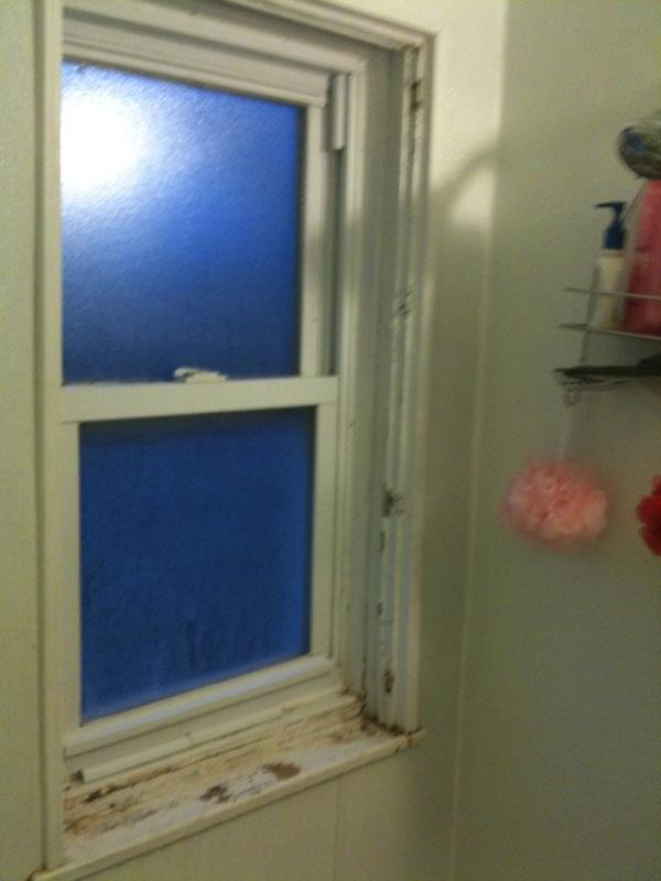 Super Painting Bathroom Window In Shower - Painting - DIY Chatroom Home  PG53