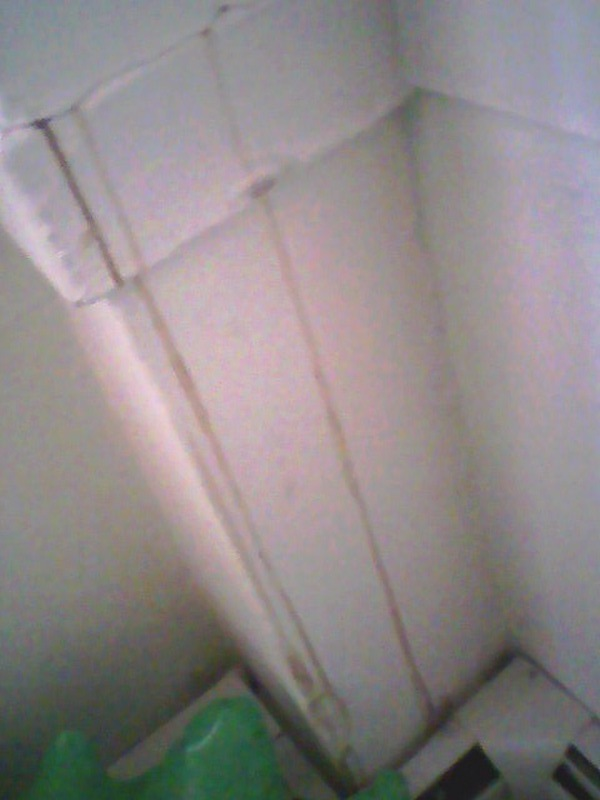 What's oozing out of my wall?!-photocrack.jpg