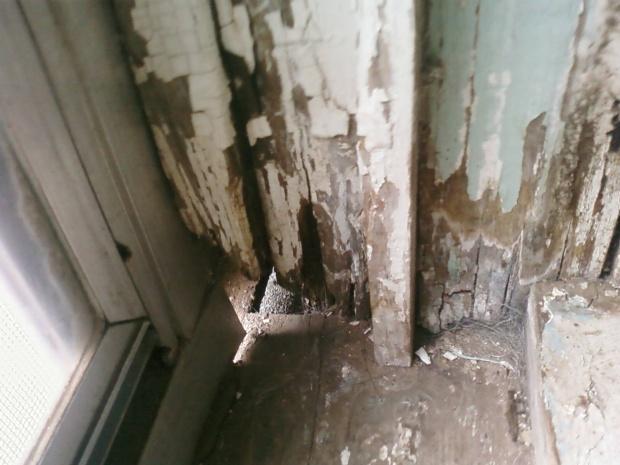 Rotted Wood Windows (pics)-pic-0105.jpg