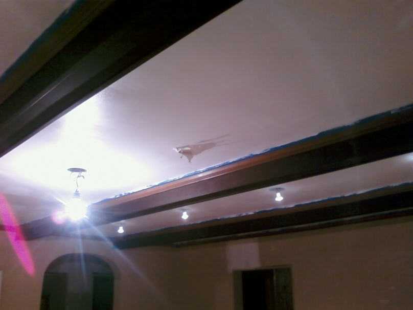 Painted ceiling and all coats of paint underneath bubbled and peeled off! (Pictures)-pic-0392.jpg