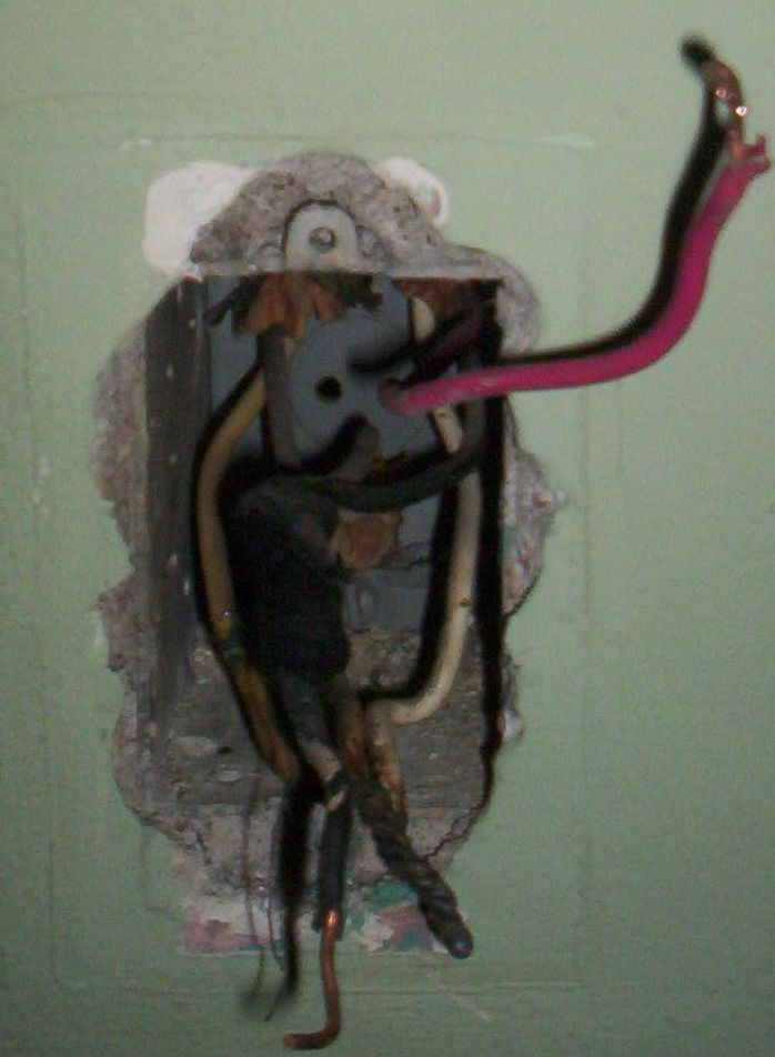 uninsulated neutral conductors-pic2.jpg