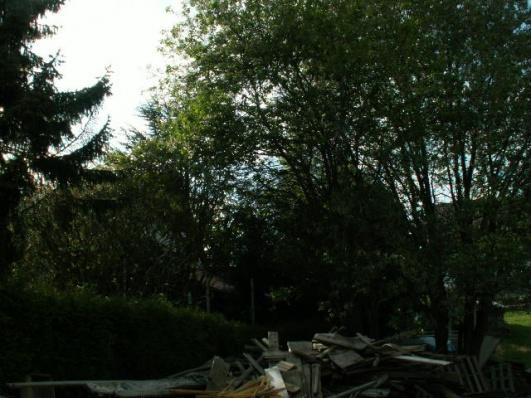 German House Rebuild-pict0066.jpg