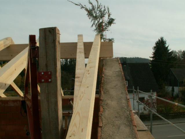 German House Rebuild-pict0423.jpg