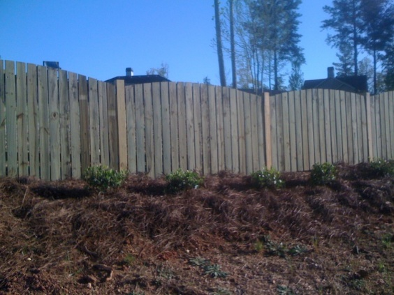 Backyard Fence (Part 1)-picture-008.jpg