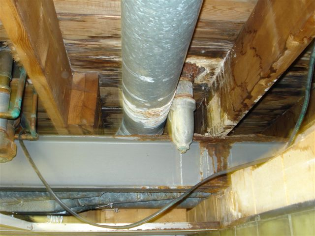 Wood beam dryrot and iron beam rust-picture-011.jpg