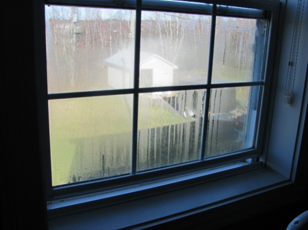 Condensation on all windows-picture-1.jpg