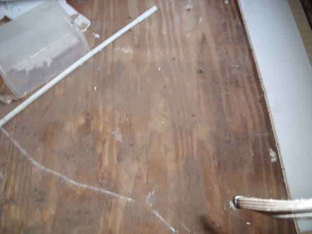Complete Mobile Home Remodel-plywood-subfloor-living-room.jpg