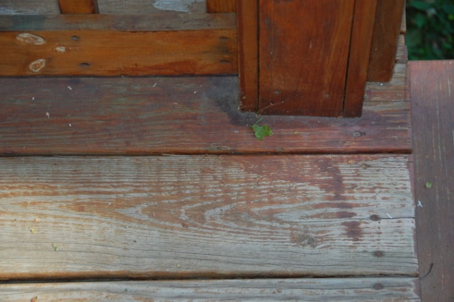 How Do I Stain This Porch?-porch-002.jpg