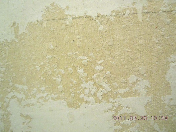 bathroom walls-post1.jpg