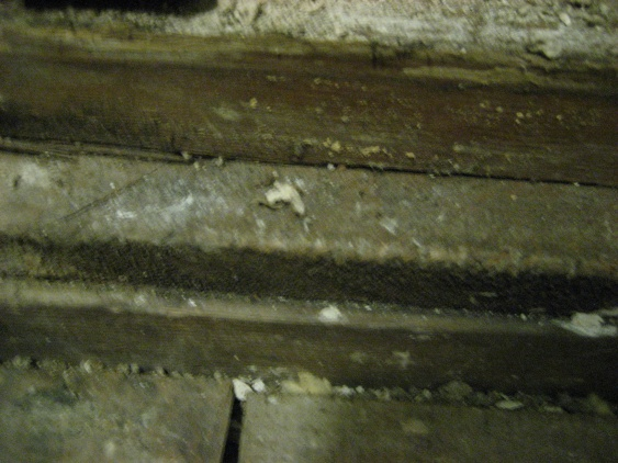 Bathroom subfloor pier and beam foundation-preping-house-resale-327.jpg
