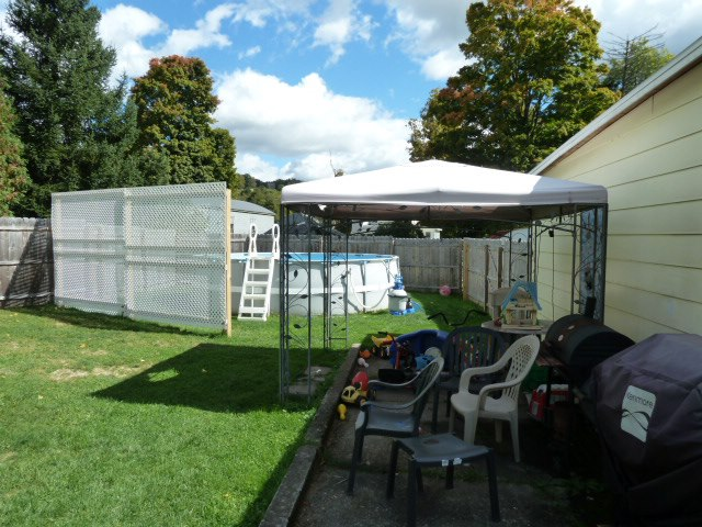 Privacy Screen for Backyard Pool-privacy-fence.jpg