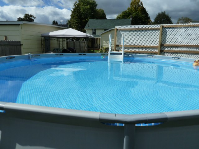 Privacy Screen for Backyard Pool-privacy2.jpg