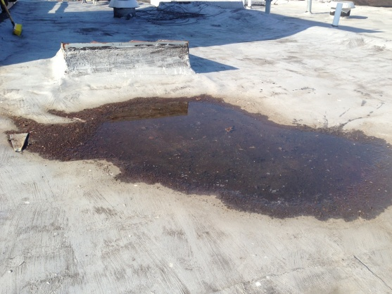 Built up roof maintenance-puddle2.jpg