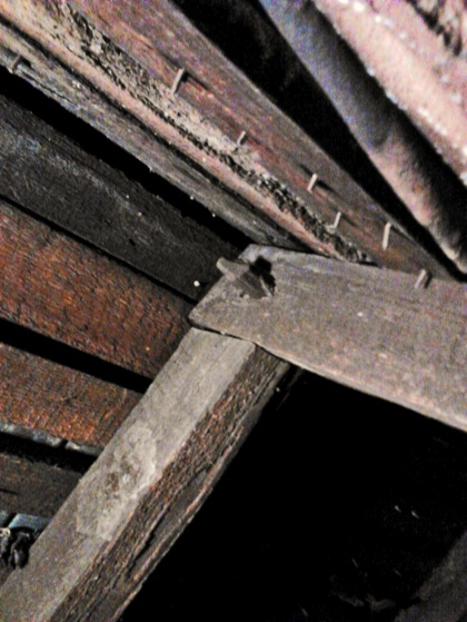 rerplace roof on 200 year old house-rafter-1.jpg