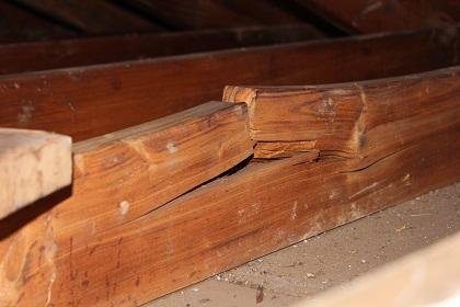 Garage Rafter is Split...repair??-rafter-split.jpg