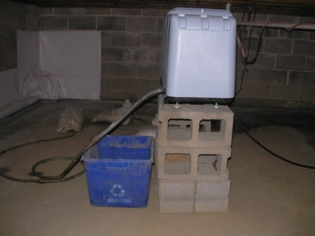 Who is the duty expert on water intrusion?-raised-dehumidifier.jpg