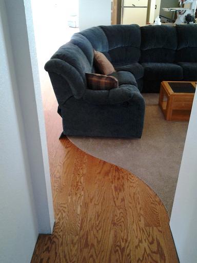 Wood to Carpet Curved Transition-renovation1.jpg
