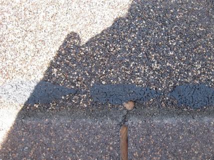 How to repair termite damage � rafter ends (outriggers)-repair4.jpg