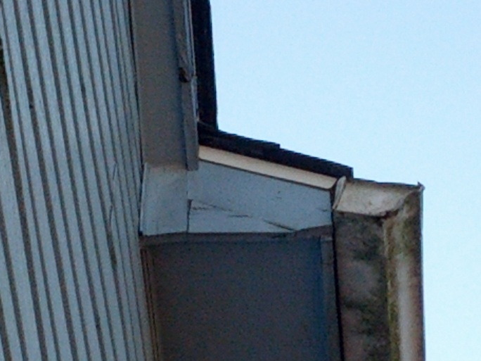 Finally decided to do fascia capping-resizedlarge-fascia.jpg