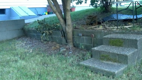 retaining wall redo?-retain2.jpg