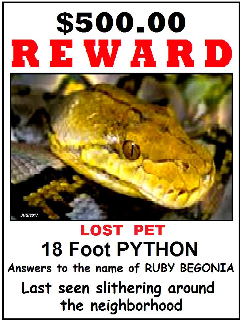 What Snake?-reward.png