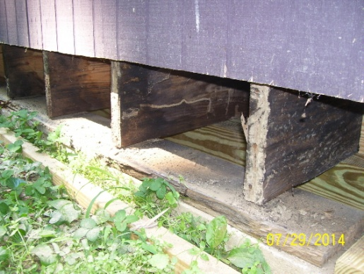 Replacing Rim Joist and Plate.-rim4.jpg