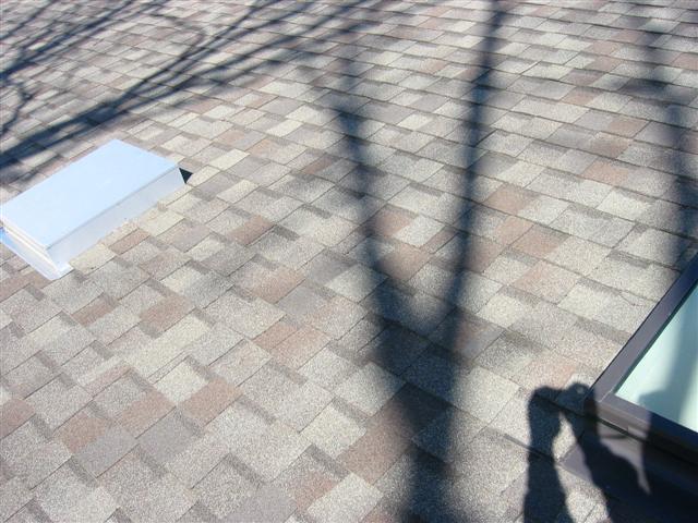 Strange Winter Roof Leak-roof-001-small-.jpg