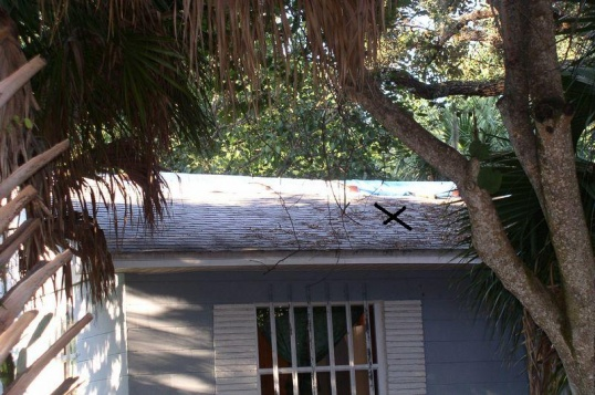 shingle roof leak and hurricane questions-roof-2-.jpg
