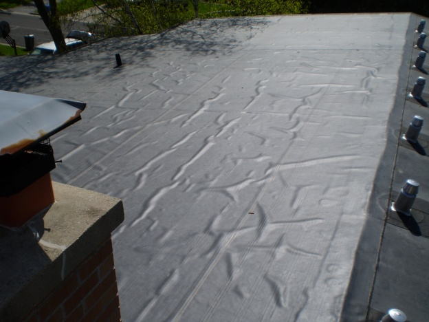 Rubber Roof Bubbles-roof.jpg