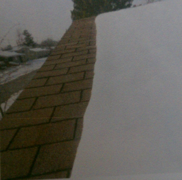 Home insurance says i have to replace roof!-roof.jpg