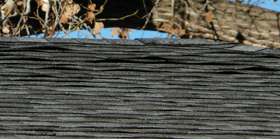 roofing-roof-nov-1-2010-004.jpg