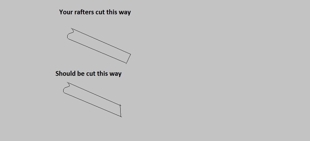 Gutter repair advice-roof-rafters.jpg