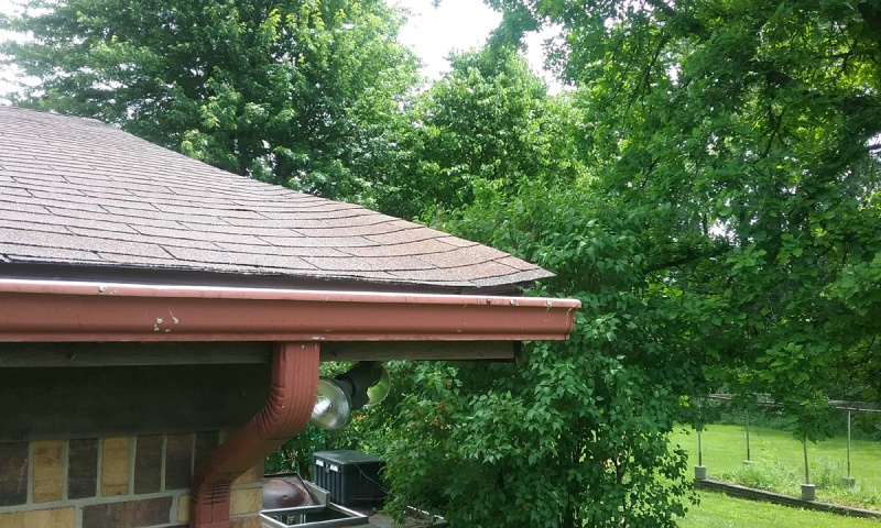 Help with Roof Plywood Lifting-roof1.jpg