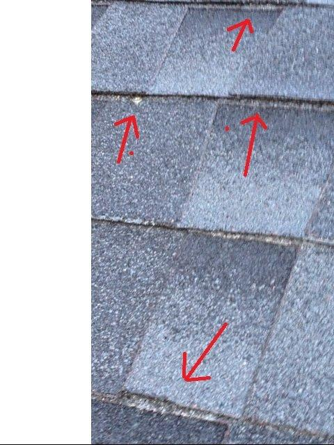 need some help on new roof-roof5.jpg