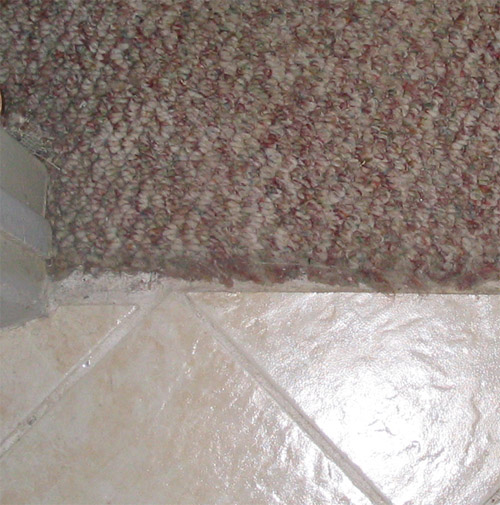 Joining carpet and ceramic tile rooms-room1.jpg