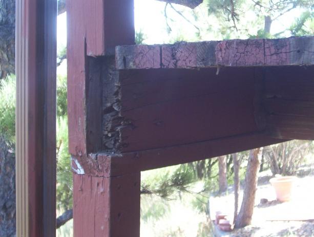 deck repairs-rotten-2x6.jpg