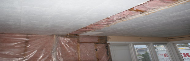 RX Energy Shield Sheeting on ceiling-rsz_dsc08195.jpg