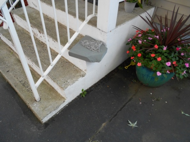 Refacing my cement front steps - I have a question-s3100-002a.jpg