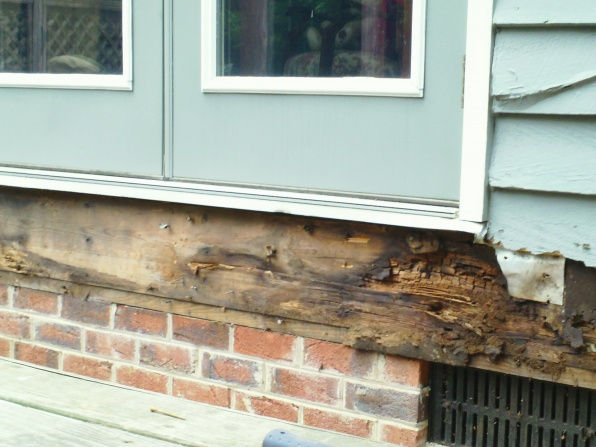 Rotten joist/sill plate - what expertise is needed?-sam_0570.jpg