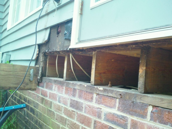 Rotten joist/sill plate - what expertise is needed?-sam_0639.jpg